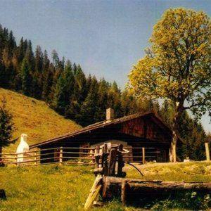 BAM-SBG Taxenbach Hütte/Hut 8 Pers.