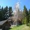 Almferienhaus-Kleinhinterberger Hütte