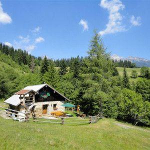 LAN-SBG St. Martin Hütte/Hut 8 Pers.