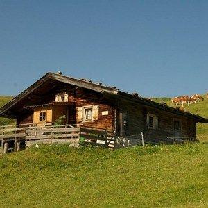 NAP-SBG Lofer Hütte/Hut 8 Pers.