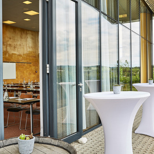 LOISIUM Wine & Spa Resort Langenlois  Sup.