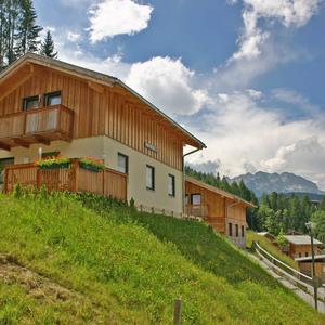 Alpendorf Dachstein West / Chalet Gamsblume 2-6 Pers.