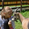 Feriendorf Ponyhof  Superior