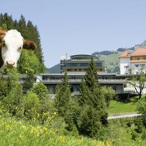 Hotel Schloss Lebenberg  Superior