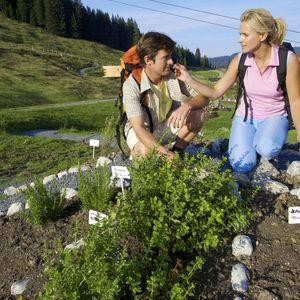 FairReisen Package - Naturidyll Hotel AlpenOase Sonnhof ***