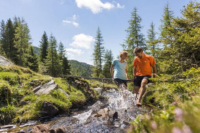 Naturpark Nockberge / Einzigartige Naturwelt