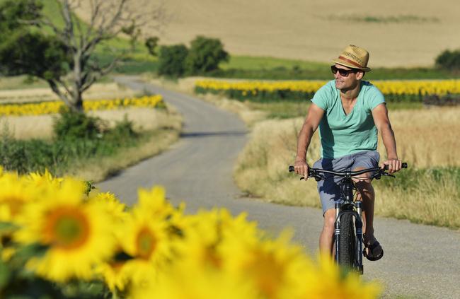Radfahren im Pannonischen Sommer / Idylle am Neusiedler See